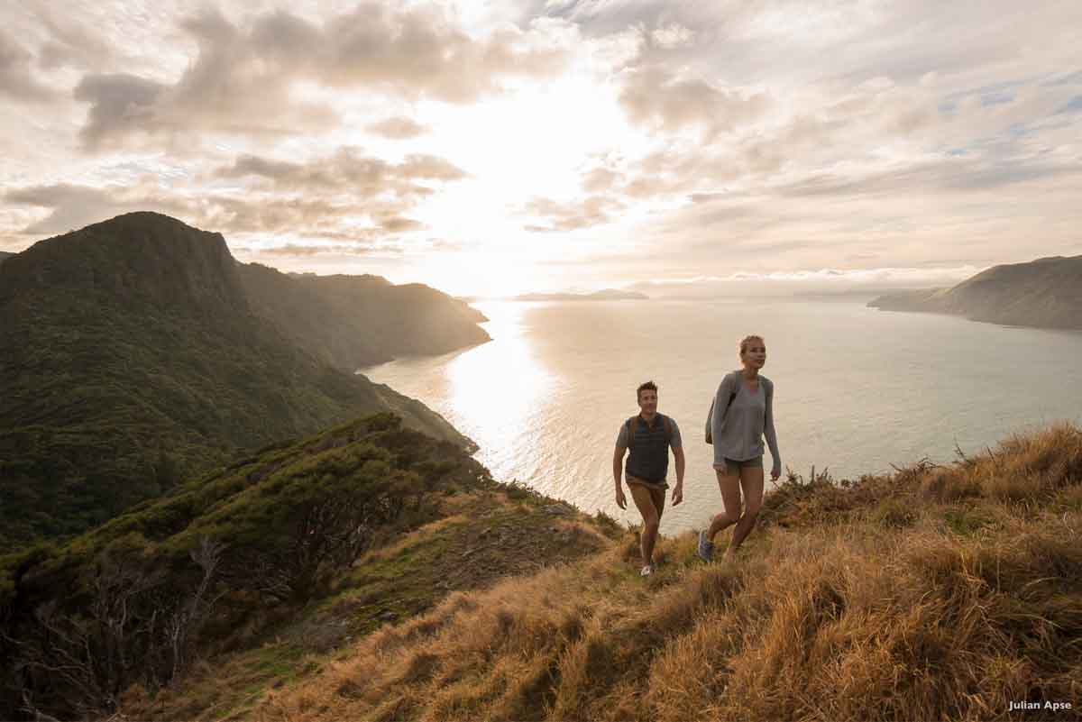 Neuseeland Highlights Waitakere Ranges
