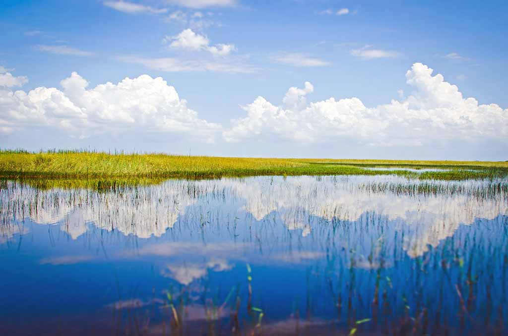 Amerika Nationalparks Florida Everglades Nationalpark