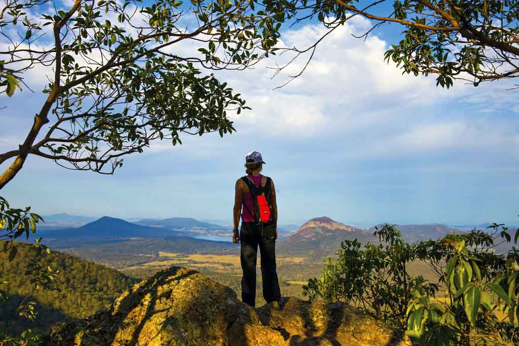 Queensland Highlights Main Range National Park