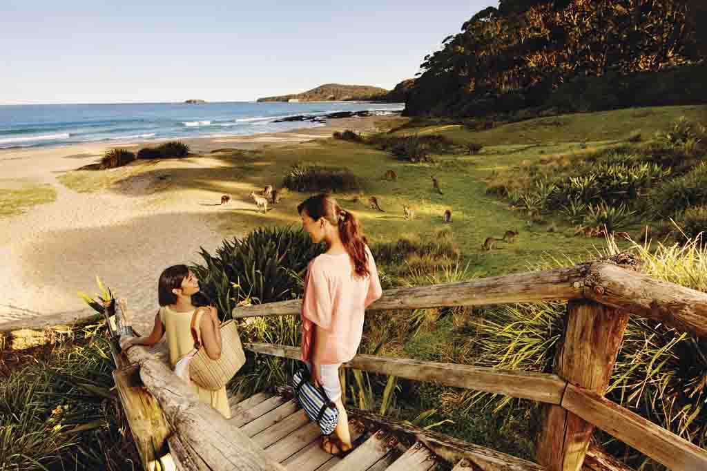 New South Wales Reiseziele Australien Pebbly Beach Murramarang Nationalpark