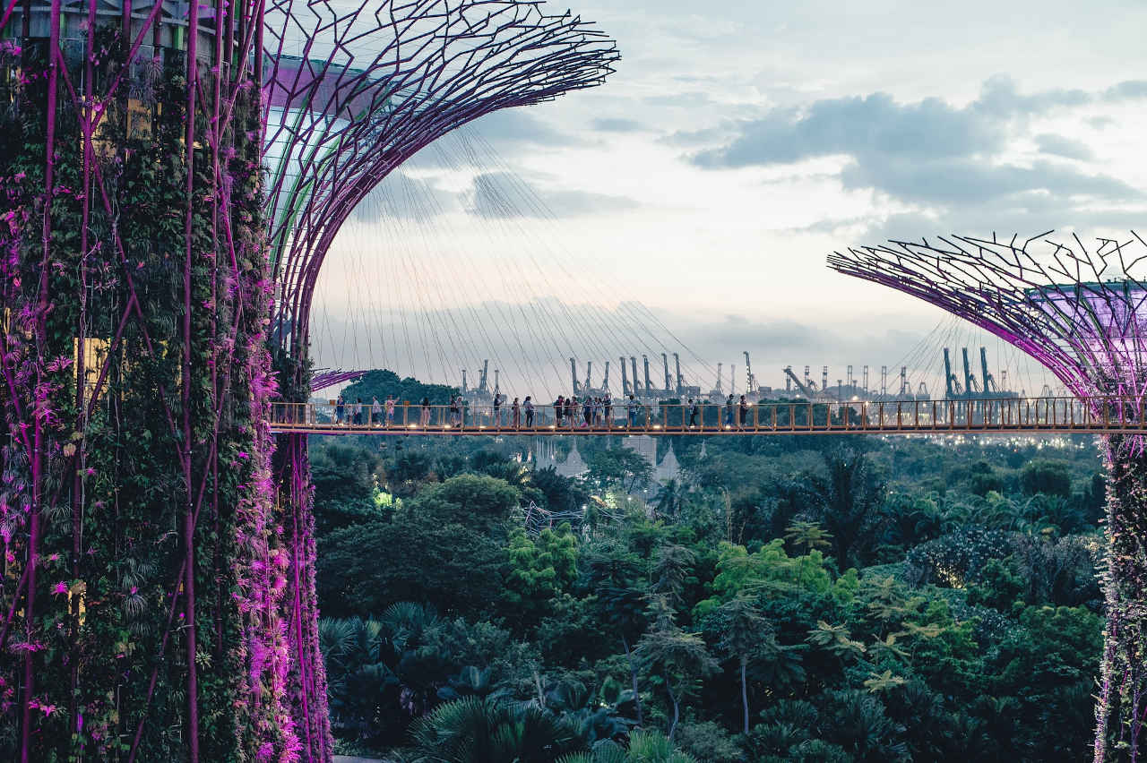 Gardens by the Bay in Singapur Reisetipps