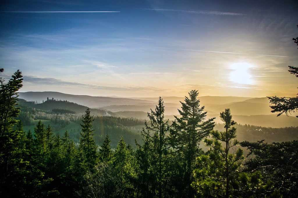 Holidays in Bavaria Sightseeing Bohemian Forest