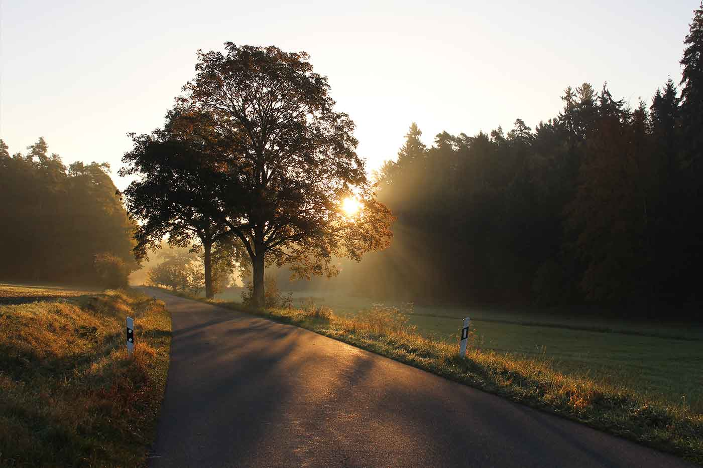Germany road trip holiday routes